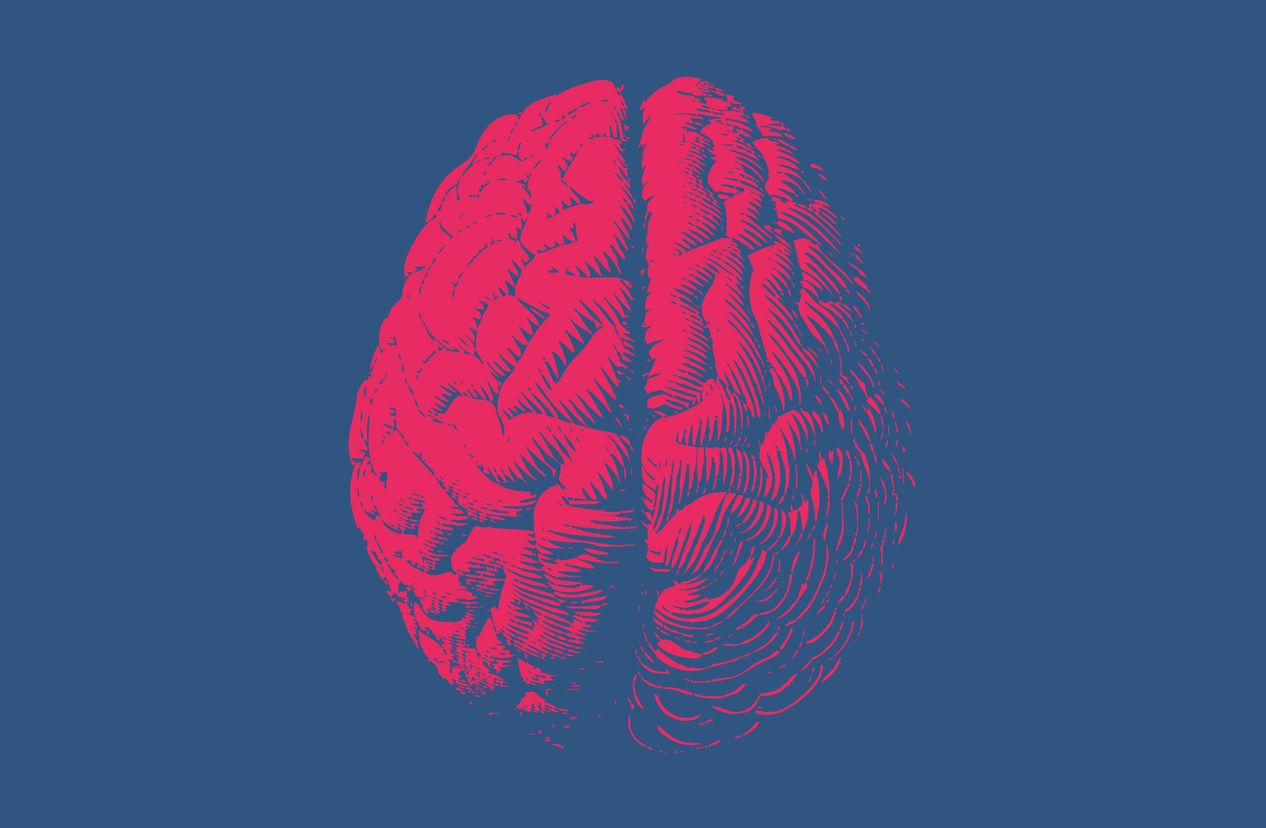 Grow Your Brain with BDNF!